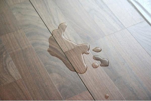 sàn nhà bị ẩm mốc