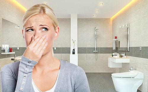 Cách khử mùi hôi trong nhà hiệu quả
