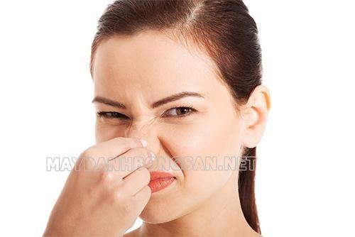 Tại sao lau sàn có mùi tanh